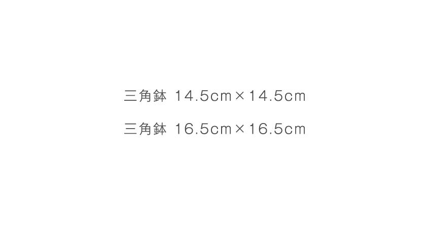 荒刷毛目 - 14.5cm×14.5cm - 16.5cm×16.5cm