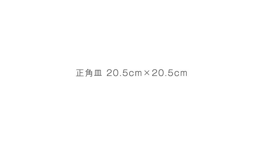 荒刷毛目 - 20.5cm×20.5cm